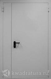 Дверь противопожарная ДПМ EI60-02 Ral 7035