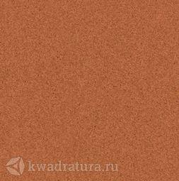 Линолеум Tarkett (Primo Plus) Cpri 305